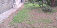 Фермское шос. д.36 к.6 подсыпка газонов (1)