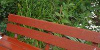 Серебристый б р д.6 корп.1 окраска скамеек