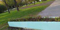 Аэродромная ул. д.11 корп. окраска вазона (2)